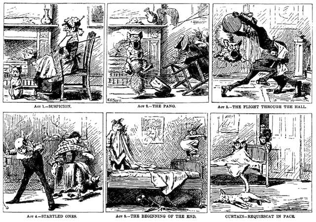 Our Cat eats Rat Poison, «Harper's New Monthly Magazine», 1881