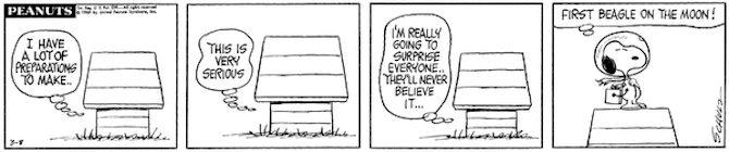 peanuts fumetti luna