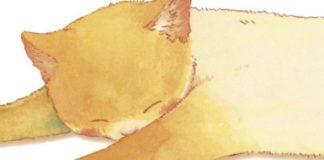 nekomichi manga