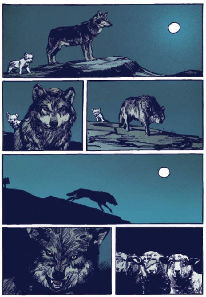 lupo rochette ippocampo
