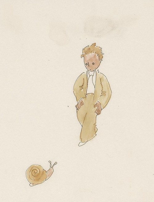 acquerelli piccolo principe