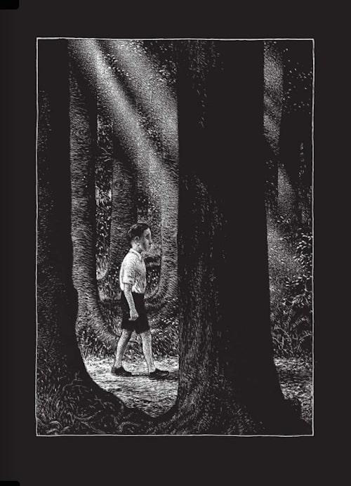 foresta thomas ott